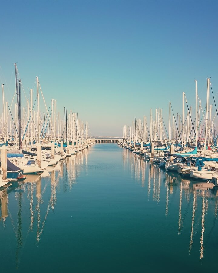 Horizon of masts in marina