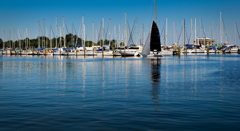 Sea marina in Florida with row of white boats and one black-sailed boat