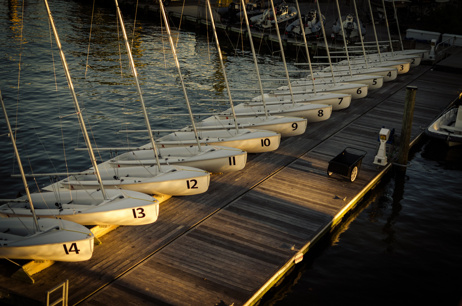 Row of sailing dinghies in golden hour at the dock