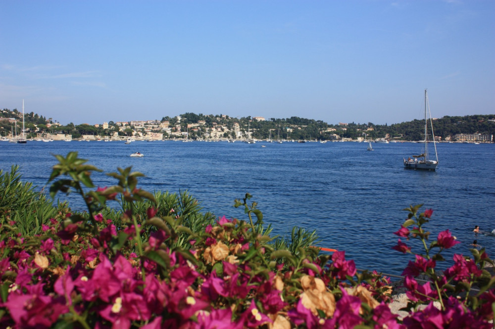Flowers at the Riviera with a sailboat in the background